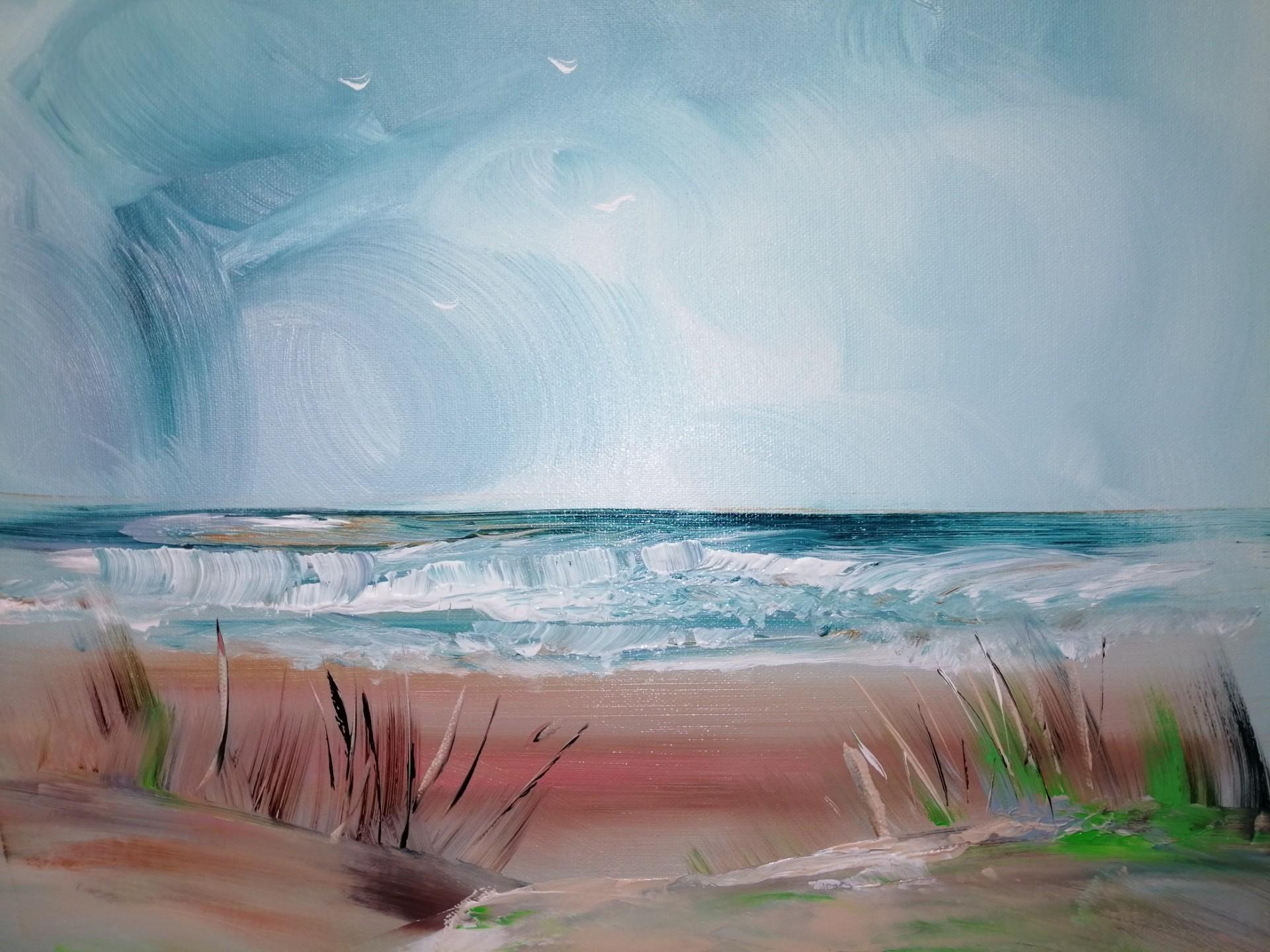 la plage déserte ! rendons la nature à la nature !