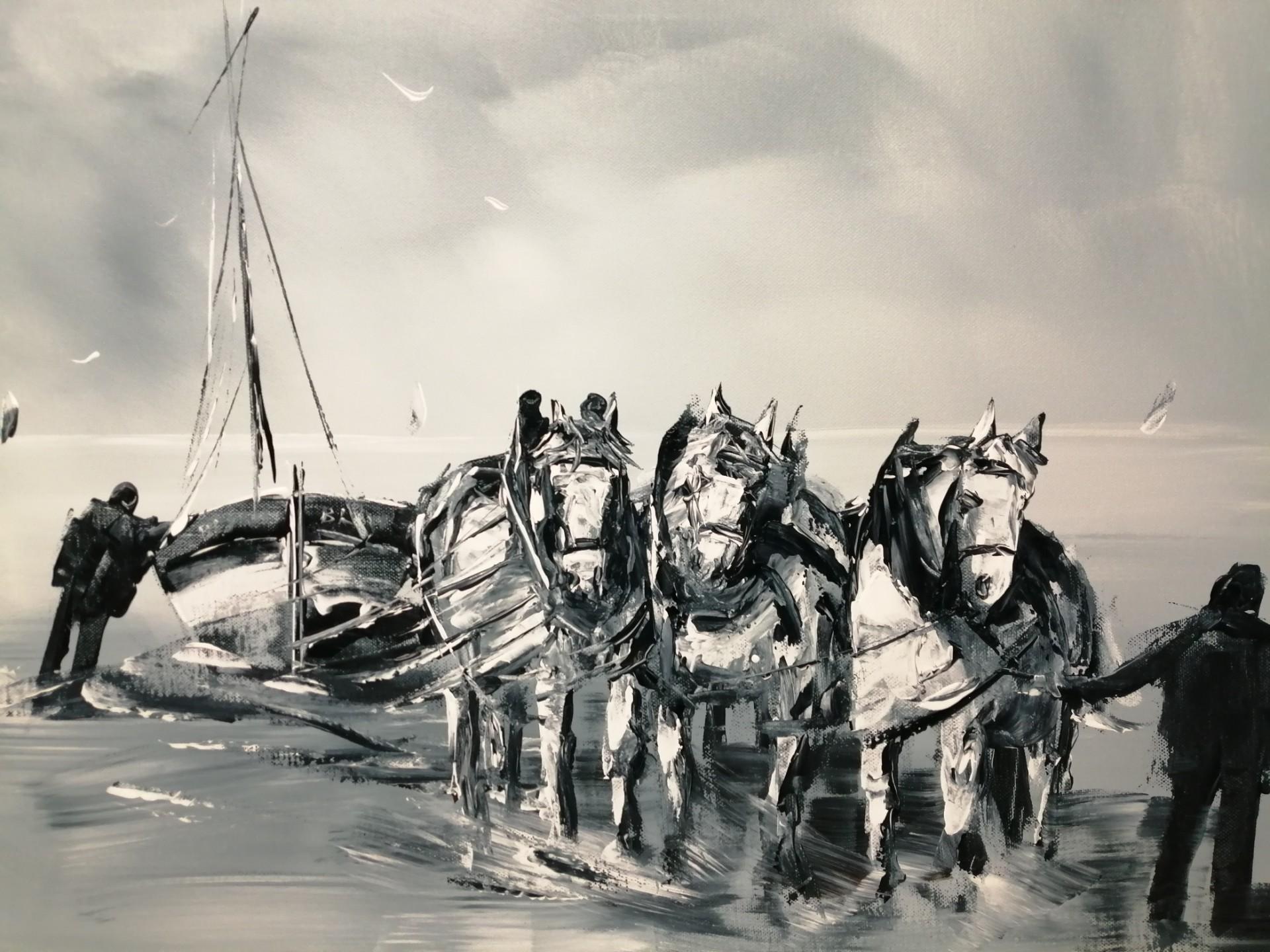 Retour du flobart tiré par 3 chevaux boulonnais